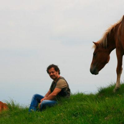 Bisbini 2012 Lessons with Francesco De Giorgio