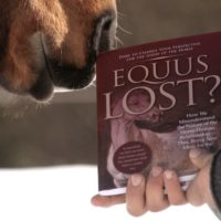 Book exploration Equus Lost - The Cognitive Horse - Sparta new edition 2017